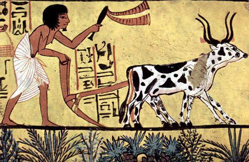 Civilizações agrícolas: características e contribuições 1