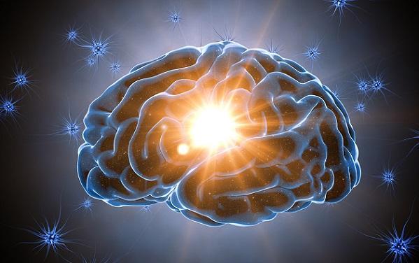 Cognição: processos, características e estrutura 64