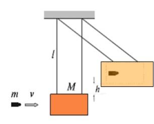 Choques inelásticos: em uma dimensão e exemplos 12