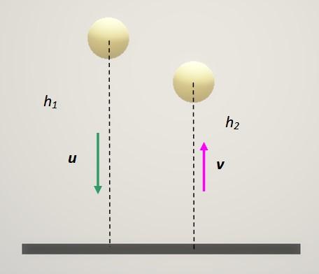 Choques inelásticos: em uma dimensão e exemplos 4