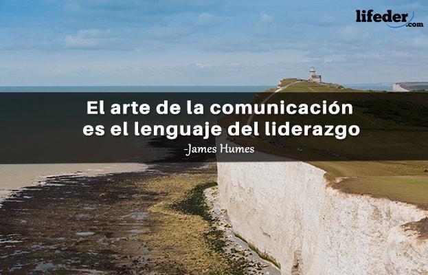 71 Frases de comunicação dos melhores comunicadores 15