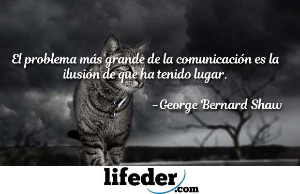 71 Frases de comunicação dos melhores comunicadores 5