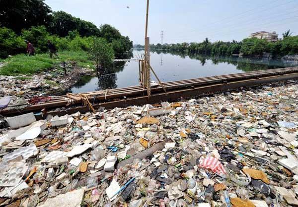 Poluição do lixo: causas, consequências e exemplos 5