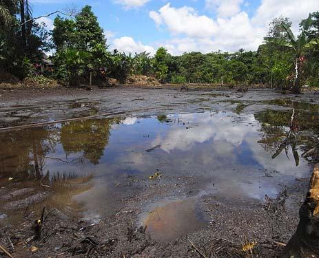 Poluição do rio: causas, poluentes e efeitos 3