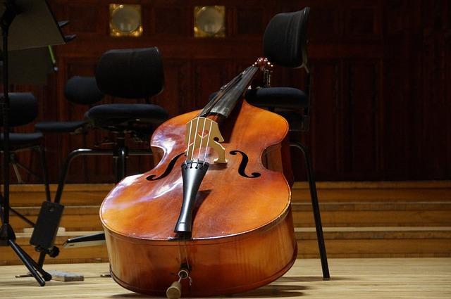 Instrumentos de corda e suas partes 5