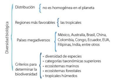 Carta Sinóptica: Características, Elaboração, Tipos 3