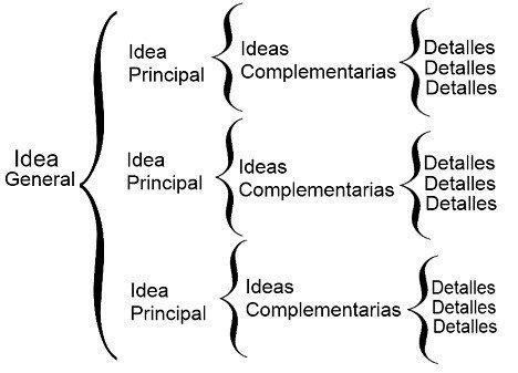 Organizadores gráficos: tipos, características e exemplos 6