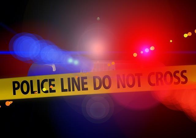 7 breves histórias policiais para crianças e adolescentes