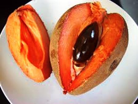 As 10 frutas que começam com M mais destaques 4