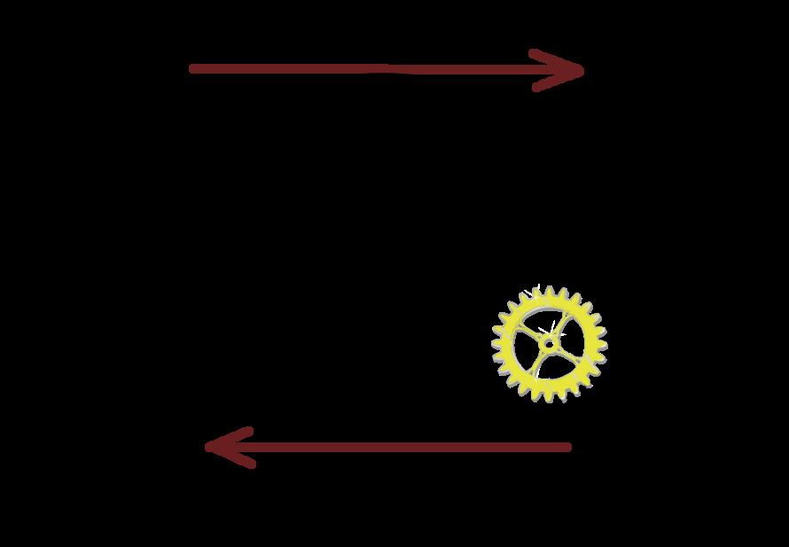 Anabolismo: funções, processos, diferenças com catabolismo 2