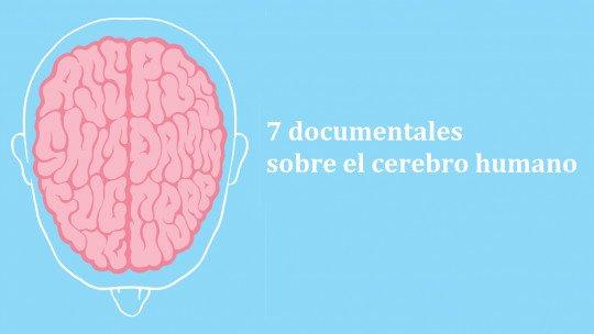 7 documentários que falam sobre o cérebro humano 1