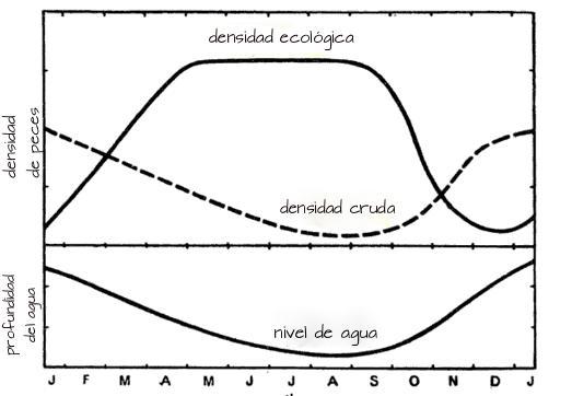 O que é densidade ecológica? 1