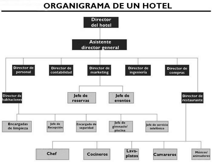 Como é o organograma de um hotel? (e suas funções) 3