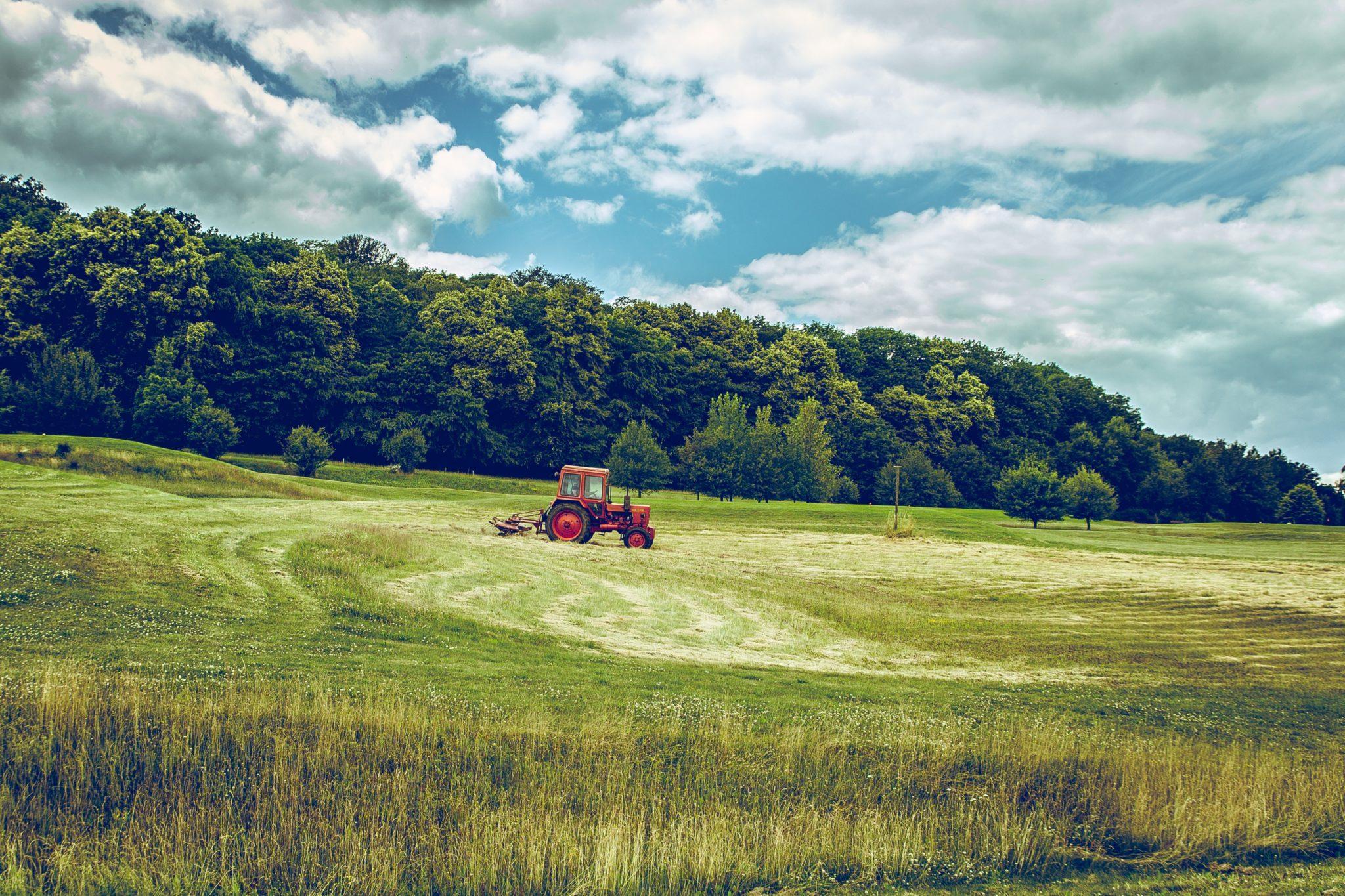Sociedade de produção rural: características, vantagens 1