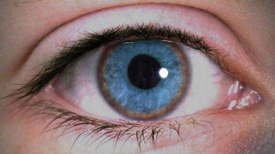 Doença de Wilson: sintomas, causas e tratamento 5