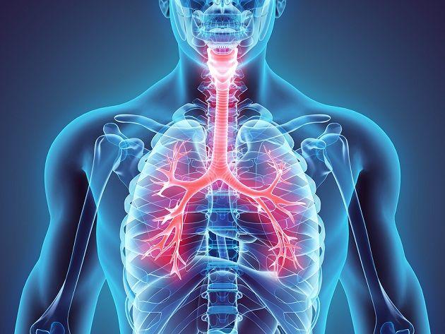 Doenças respiratórias mais comuns e suas características 1