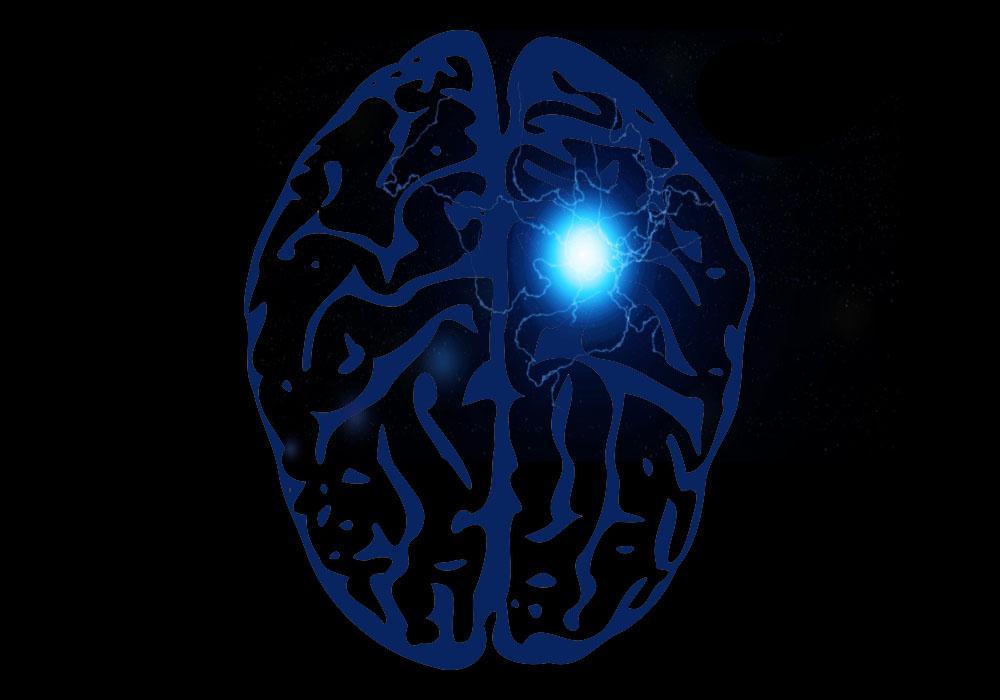 Lobo occipital: anatomia, funções e lesões 7