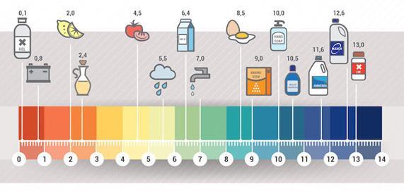 Que bases químicas podem ser encontradas em casa? 2