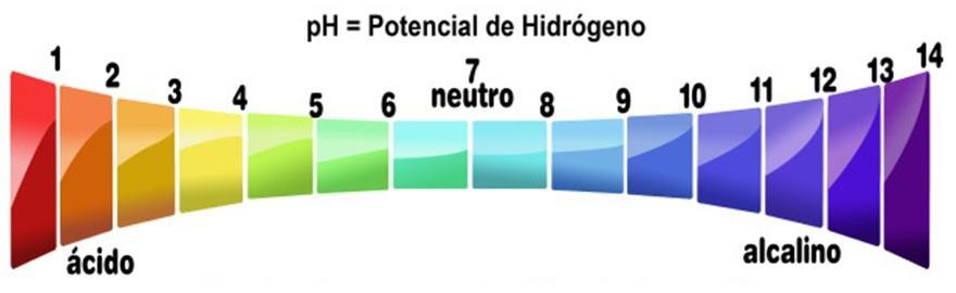 As 7 características das bases mais importantes 3