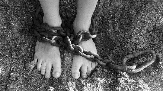 Síndrome do escravo satisfeito: quando apreciamos os cílios 1