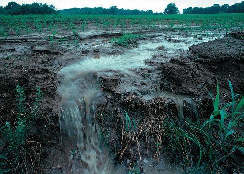 Os 10 principais poluentes da água e seus efeitos 6