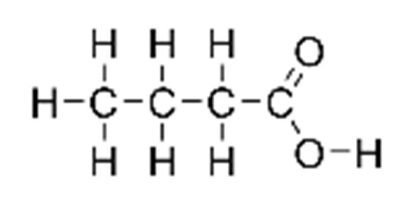 Ácido butírico: fórmula, propriedades, riscos e usos 1