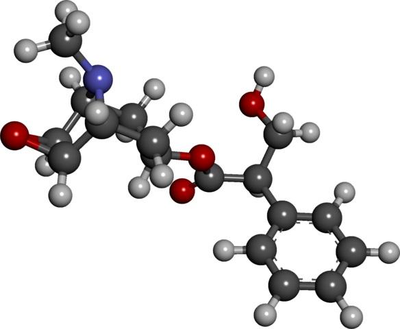 Escopolamina (burundanga): sintomas e mecanismo de ação 2