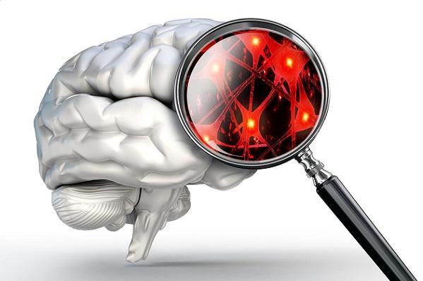 Fisiopatologia da depressão: principais características 1