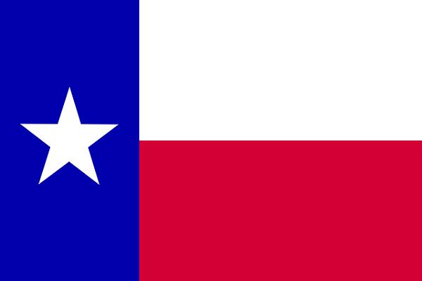 Bandeira do Chile: História e Significado 11