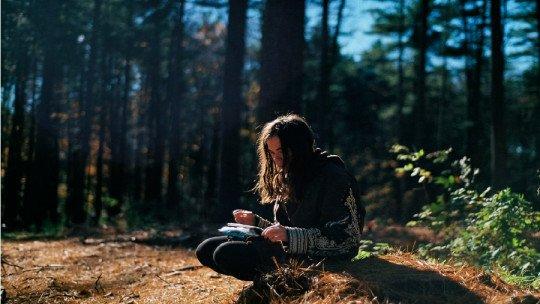 105 frases sobre el medio ambiente y la ecología 1