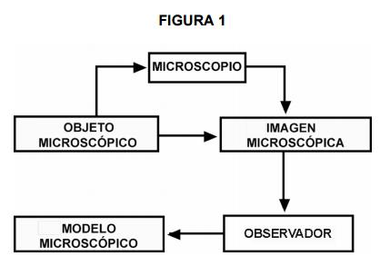 Importância do microscópio para a ciência e a humanidade 2