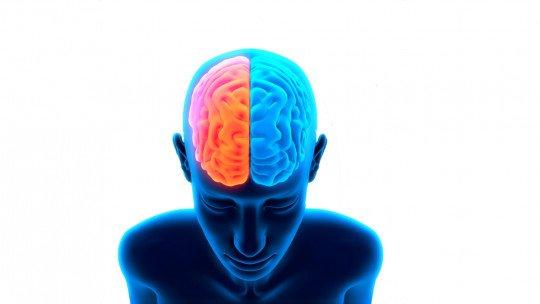 GABA (neurotransmissor): o que é e qual o papel que desempenha no cérebro 1