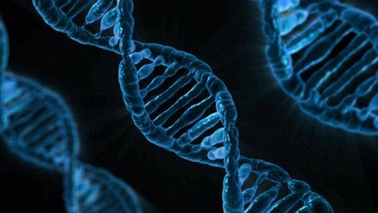 Somos escravos de nossos genes? 1