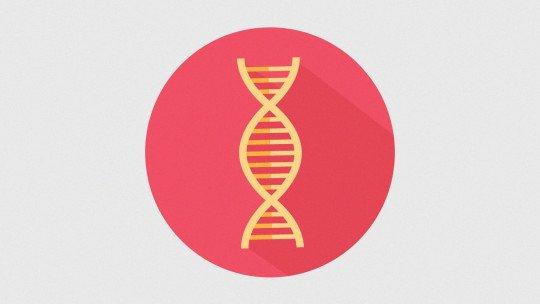 Genética comportamental: definição e suas 5 descobertas mais importantes 1