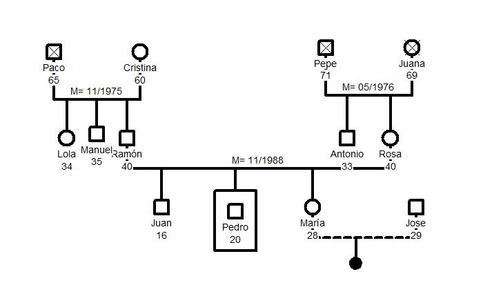 Genograma da família: símbolos, como é feito e exemplo 1