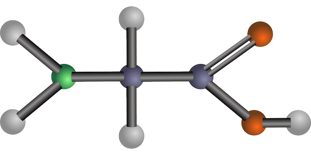 Glicina: funções, estrutura e propriedades 1