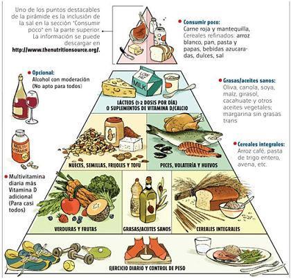 Como os alimentos são classificados: os 7 grupos 15