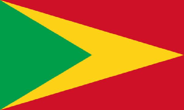 Bandeira da Guiana: história e significado 7
