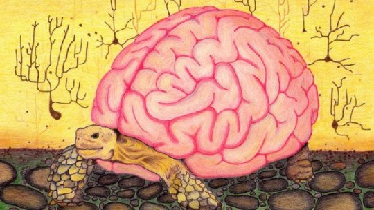 """""""Heurística"""": os atalhos mentais do pensamento humano 1"""