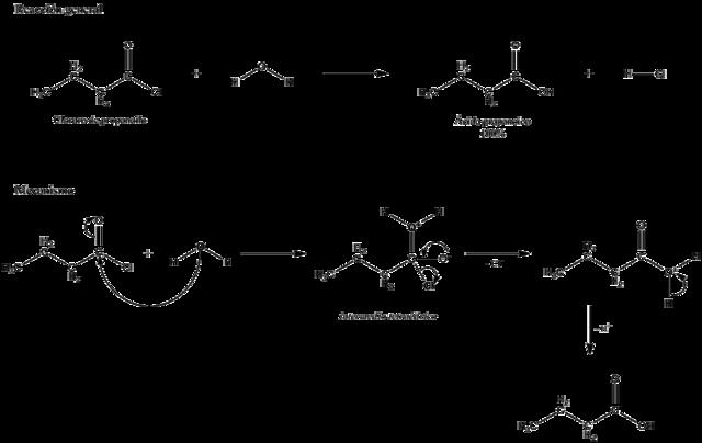Hidrólise: Exemplos (de sais, ácidos, bases, C. orgânico) 1