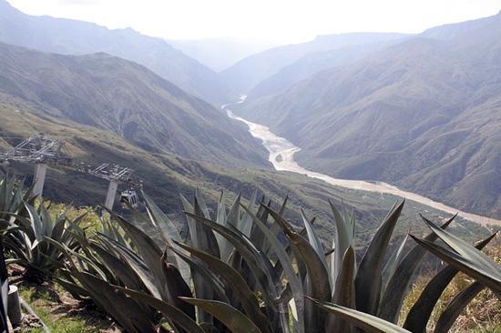 Cordilheira Oriental da Colômbia: características, relevo, flora 3