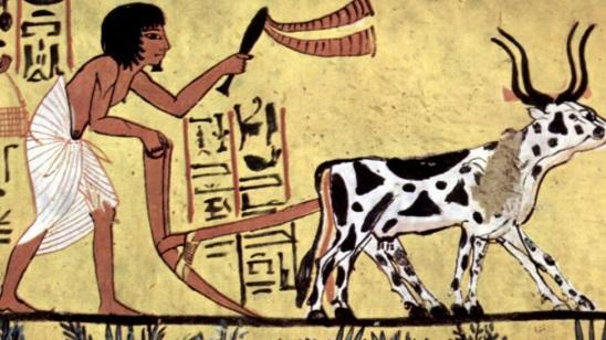 História da Agricultura: Em que período foi desenvolvido? 1
