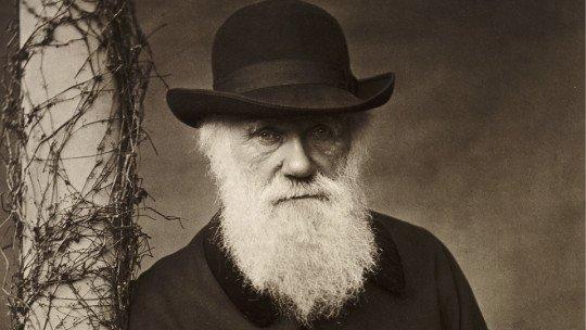 A influência de Darwin na Psicologia, em 5 pontos 1