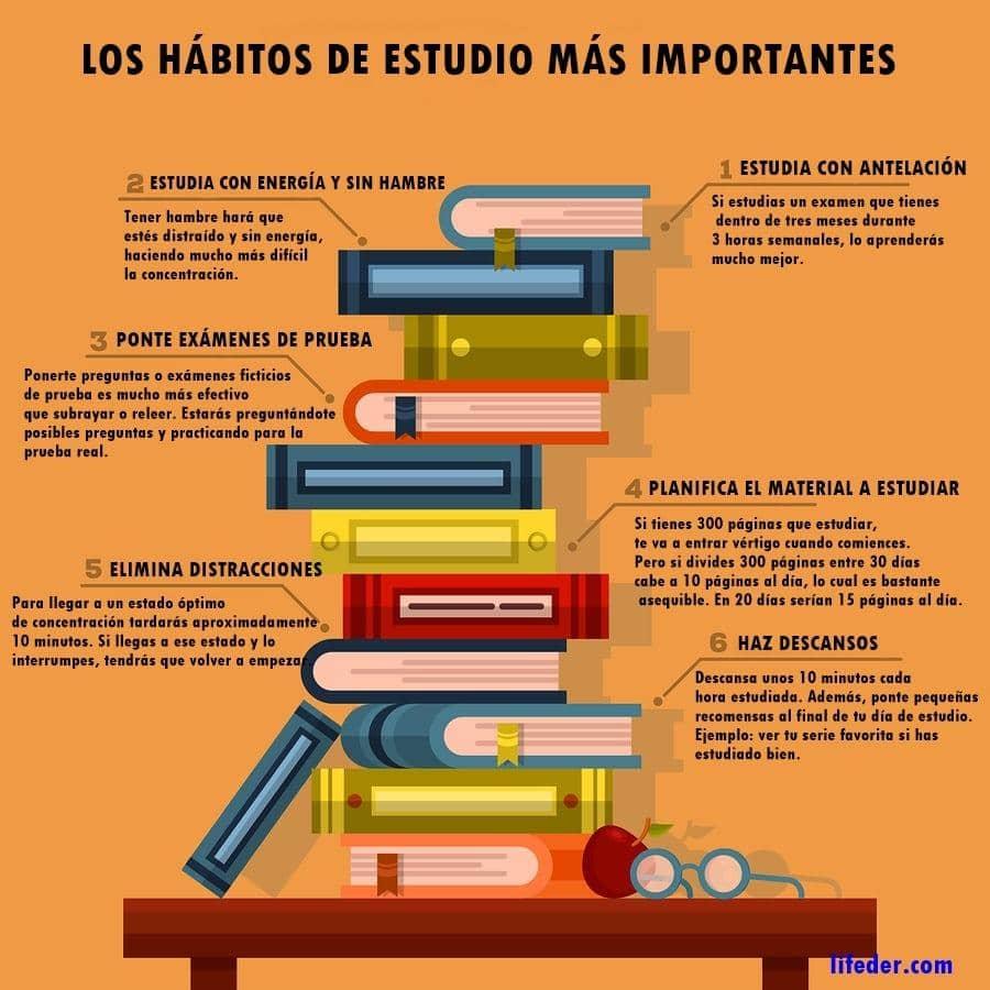15 hábitos de estudo essenciais para bons alunos 3