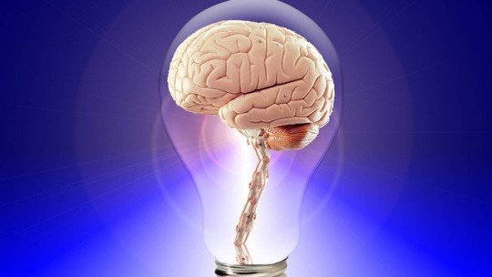Inteligência Fluida e Inteligência Cristalizada: o que são? 1