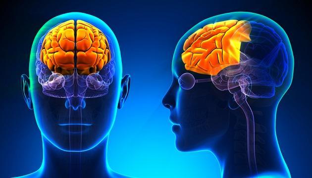 Phineas Gage: o caso que mudou a neurociência 5