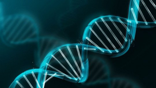 10 livros e manuais de bioquímica para iniciantes 15