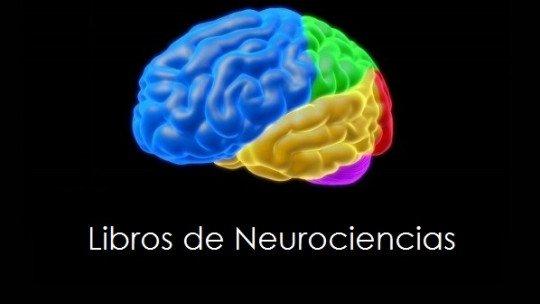 13 livros de neurociência para iniciantes (altamente recomendado) 1