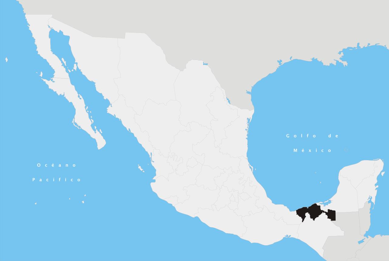 Tabasco History: Principais Características 2
