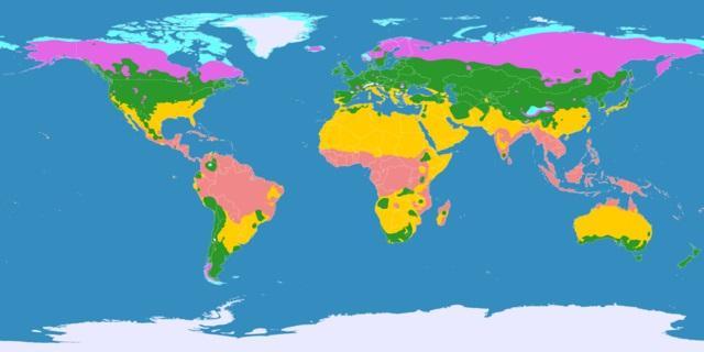 Clima temperado: características, tipos, plantas e fauna 2